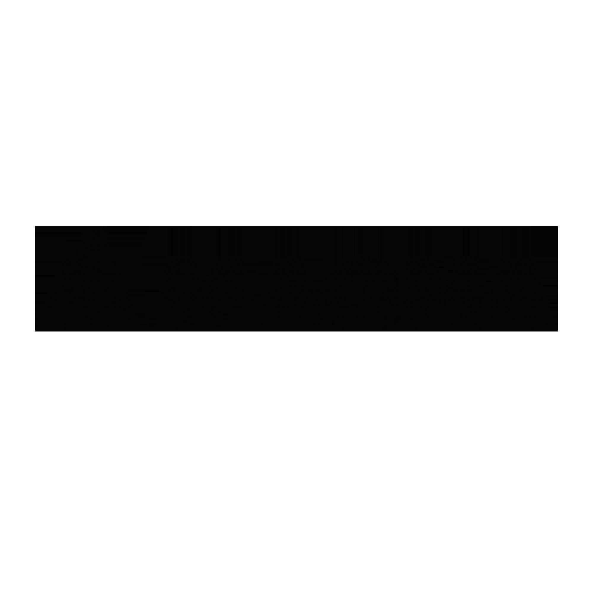 www.magna.com